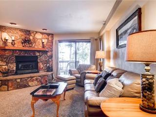 Comfortable Breckenridge 1 Bedroom Free shuttle to lift - AT002