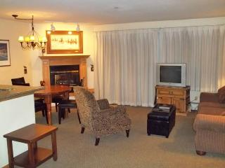 Perfectly Priced Breckenridge 1 Bedroom Ski-in - RW115