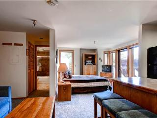Wonderful Breckenridge Studio Ski-in - TL17