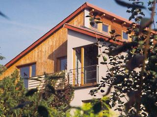 Family Vacation Rental in Dresden Tolkewitz