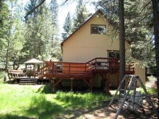 View of cabin and backyard with bench swing