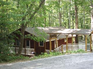Falling Water Cottage on Stream! - WiFi - Fenced - Gas Fireplace