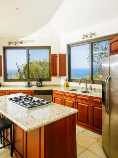 gourmet granite kitchen