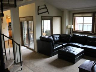 Breckenridge, CO  Luxury Ski Condo - Ski In/Out