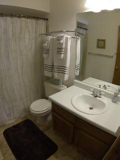Full bathroom located in the master suite.