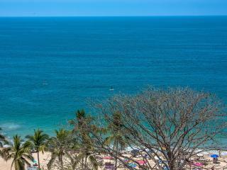 150 ft to beach, 5 min to nightlife /restaurants, Puerto Vallarta