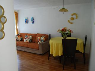 Furnished apartment two blocks from the Metro Park Bustamente, Santiago