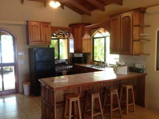 Fully equipped Kitchen with microwave, coffee maker, blender, toaster, etc