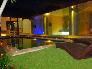 Seminyak New Chic 3 Bed/3 Bath pool