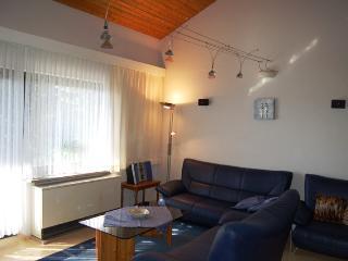 AKKU aufladen - herrmanns-ferienhaus.de, Zandt