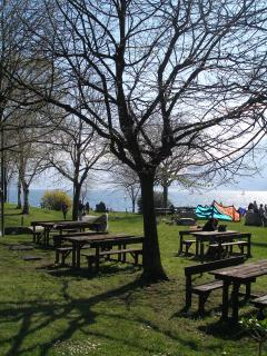 Pic-nic area by the lake