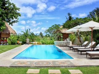 BEAUTIFUL VILLA  4 BEDROOMS iN CANGGU- STAF / SWIM, Canggu
