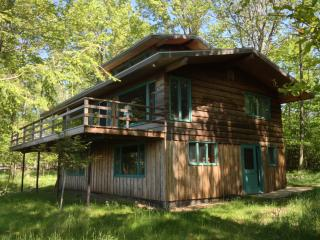 Lake Michigan Cabin - Private, Secluded Beachfront, Manistee