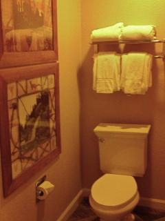 Water Closet in Master Bath