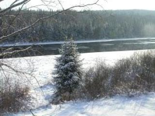 Winter time on the shore front of Batiscan river