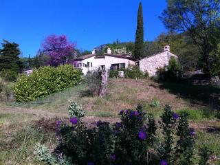 Beautiful authentic Provence villa, Tourrettes-sur-Loup