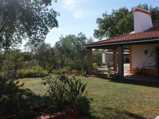Gorgeous country house for rent with swimming pool