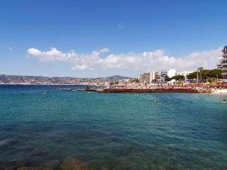 Lovely Antibes Apartment with Roof Top Pool and Sea Views