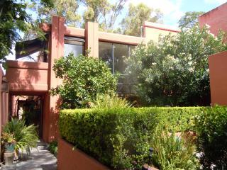 Sunny artist home in San Miguel de Allende, Arlington