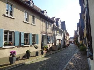 Private Apartment-close to city-free wifi, kitchen, Francfort