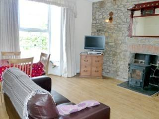Living room with lovely wood burner