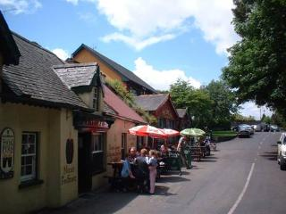Terryglass village with is award winning pubs and restaurants