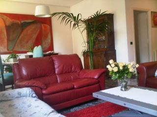 Elegant 3 km from S.Peter  residential area wi-fi parking  110mq, Rom