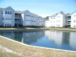 Great views of pond right next to the condo!