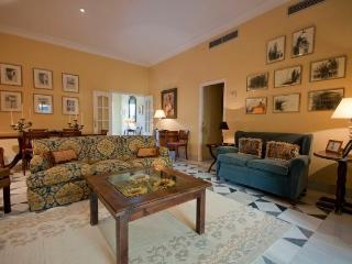 Flowers Terrace Apartment 10 pax, Seville