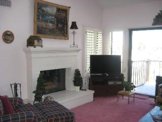Living room w/fireplace and HD TV