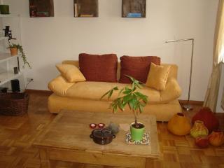 LLAG Luxury Vacation Apartment in Saarbrücken - natural, beautiful, comfortable (# 3971), Mandelbachtal