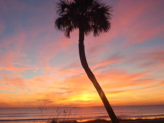 $483/WK!  BEST PRICE COCOA BEACH  FULL OCEANFRONT/ 12 steps door to beach /quiet
