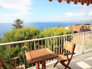 06.528 - Holiday home in Nice, Niza