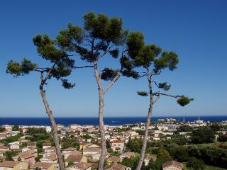 06.546 - Apartment in Antibes