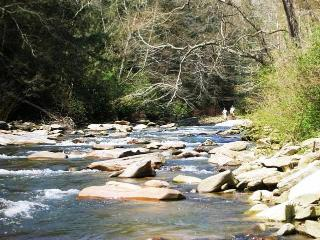 Cottage On River With Huge Backyard & Fire Pit. 5 miles from Lake Lure, NC
