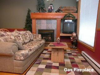 Living room has gas fireplace