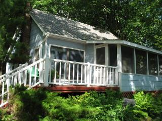 Lakeside cabin #3