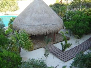 Palapa with Picnic Table and Pool