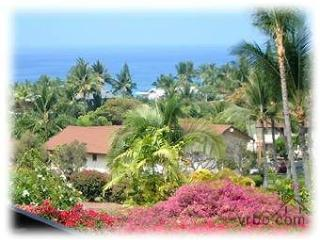 "New 60"" HDTV - BEAUTIFUL, LOVELY, LOCATION Last Mi, Kailua-Kona"