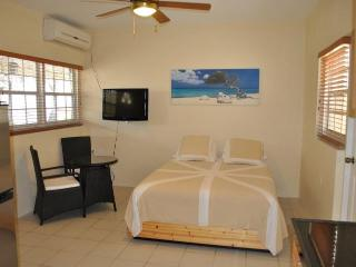 Studio apt with pool StoneThrow from everything Aruba (12F)