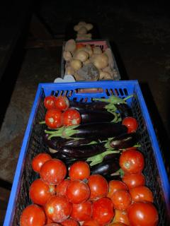 100% BIO - Our organically grown vegetables