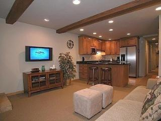 Beautiful 2 bedroom, 2 bath Condo in the heart of Aspen New Avail July