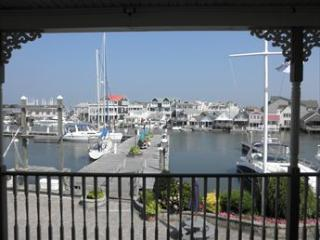 South Jersey Marina DOG FRIENDLY 117760, Cape May