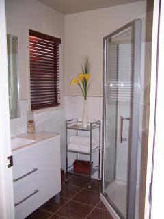 Guest Wing bathroom