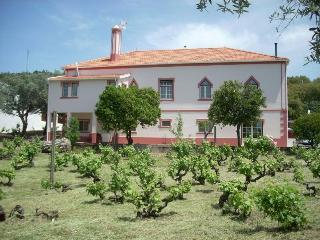 Country house B&B w/vineyard, Serra de São Mamede, Portalegre