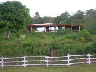 Lovely home on farm near Turrialba