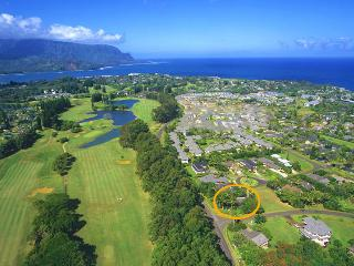 Secluded Family Friendly Home (Newly Listed), Princeville