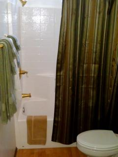 Master bath was recently remodeled, and features a tub as well as shower.