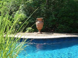 Another photo of our secluded pool.
