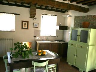 Farm apartment Gli Olivi, in Siena countryside